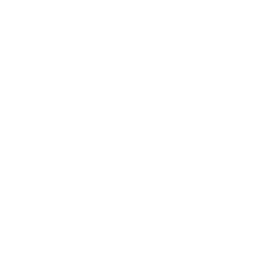 logo Double Dirts